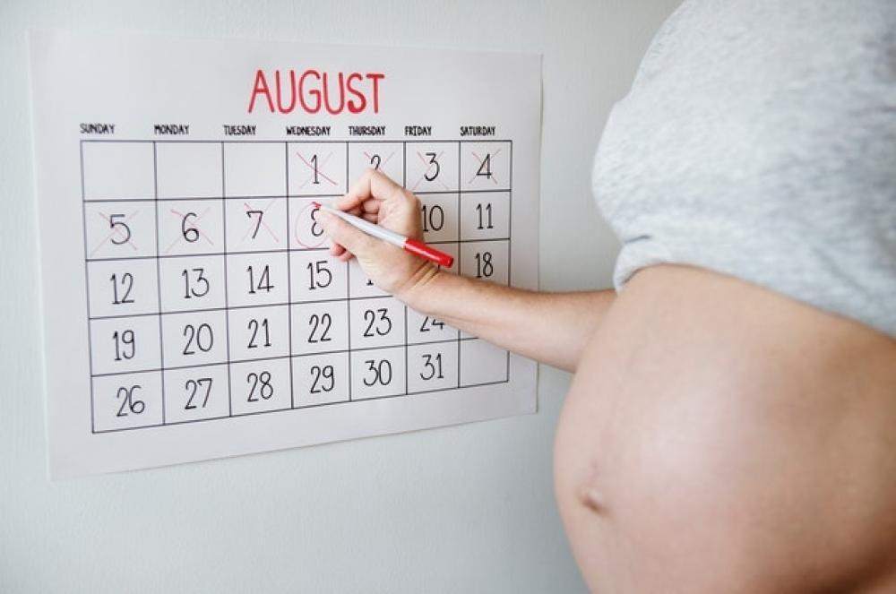 כל מה שרצית לדעת על הריון לפי שבועות, חודשים וטרימסטרים-קראי