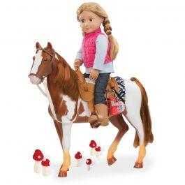 סוס רכיבה – Trail Riding Horse